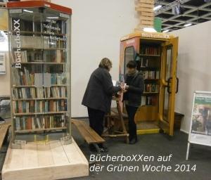 Die beiden BücherboXXen sind aufgebaut und haben schon die erste Besucherin