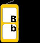 bbxx-transp-logo-NEUE-Schrift_px500